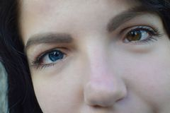 Beautiful brunette with different eye color heterochromia royalty free stock photography