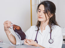 Beautiful girl doctor in a white coat holds a package of donor blood Stock Images