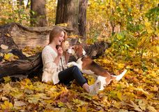 Beautiful girl with dog in the park. Young beautiful girl with a beagle in the park. Autumn sunny day Royalty Free Stock Images