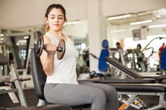 Beautiful girl doing bicep curls at the gym Royalty Free Stock Photos
