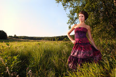 Beautiful girl in dress on field. Clear blue sky end of summer russia Stock Photos