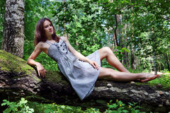 Beautiful girl in dress with long hair lying on fallen tree Royalty Free Stock Images