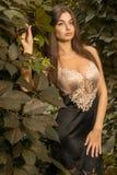 Beautiful girl in dress posing Royalty Free Stock Photos