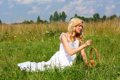 Beautiful girl in dress. Beautiful girl sitting on the green grass with a basket of fruit Stock Images