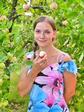 Beautiful girl in dress standing in branches of apple tree with fruit in her hand Stock Image