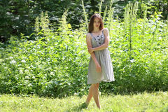 Beautiful girl in dress standing in woods amid tall grass Royalty Free Stock Image