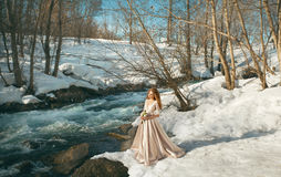 Beautiful girl in a dress. Beautiful young girl in a chic dress in the nature next to the river Royalty Free Stock Images