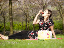 Beautiful girl eating a strawberry during a picnic Royalty Free Stock Images