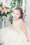 Beautiful girl in an elegant dress Royalty Free Stock Images