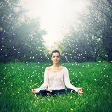 Beautiful girl is engaged in yoga in the forest. Relax and meditation Royalty Free Stock Image