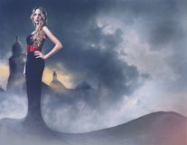Beautiful girl in evening dress Stock Images