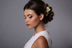 Beautiful girl with evening makeup and elegant hairstyle Stock Photos