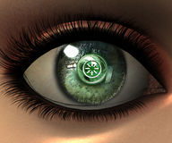 Beautiful girl eye Stock Image