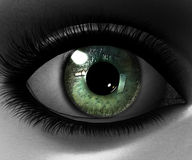 Beautiful girl eye Royalty Free Stock Photo