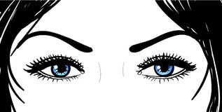 Beautiful girl eyes. Beautiful girl blue eyes and black hair stock illustration