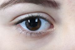 Beautiful girl face. Close up beautiful hazel eye stock photography