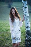Beautiful girl in fashion dress stand by birch Royalty Free Stock Photo