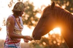 Beautiful girl feeding her handsome horse. Beautiful girl and her handsome horse, a senior portrait. Taken during sunset Royalty Free Stock Image