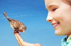 Beautiful girl feeding sparrow Stock Image