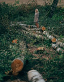 Beautiful girl in the felled forest Royalty Free Stock Images