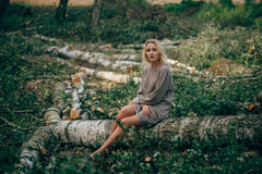 Beautiful girl in the felled forest Stock Photography