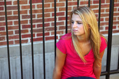 Beautiful girl by fence Stock Image