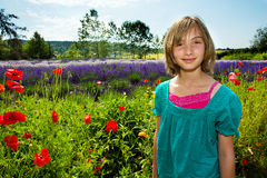 Beautiful girl in field of flowers Stock Images