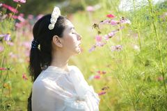 Beautiful girl With a field of flowers. Cosmos on a sunny day stock image