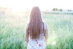Beautiful girl field green meadow in summer park delicate dress, enjoying leisure, fashion style, glamor life,  student Royalty Free Stock Images