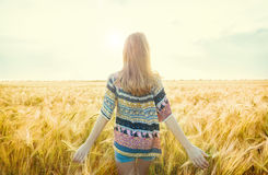 Beautiful girl on the field in sun light. Beautiful young girl on the field in sun light Royalty Free Stock Images