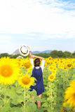 Beautiful girl in field of sunflowers, Royalty Free Stock Photos
