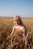 The beautiful girl in the field with wheat Royalty Free Stock Image
