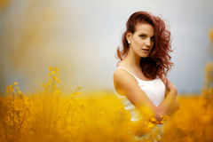 Beautiful girl in the field Stock Images