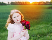 Beautiful girl with flowers Stock Image
