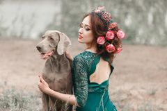 Beautiful girl with flowers woven into her hair hugs Weimaraner stock images