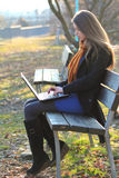 Beautiful girl focused on a laptop computer the park. Natural light Royalty Free Stock Photography
