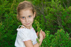 Beautiful girl in the forest Royalty Free Stock Image