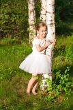 Beautiful girl in the forest near birch Royalty Free Stock Images