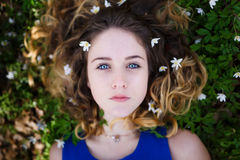 Beautiful girl in a forest Stock Photography