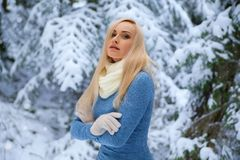 Beautiful girl in the forest under the snow Stock Photography