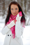 Beautiful girl. Frost, winter. Stock Photography