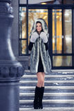 Beautiful girl in a fur coat Royalty Free Stock Photography