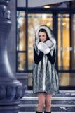 Beautiful girl in a fur coat Stock Photography
