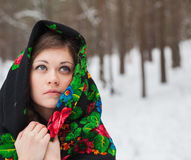 Beautiful girl in a fur hat Royalty Free Stock Images