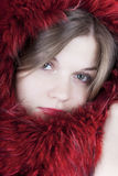 Beautiful girl in a fur shawl. Portrait of a beautiful girl in the fur Royalty Free Stock Photography