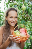 Beautiful girl in the garden with apples and pears. In the crib stock images
