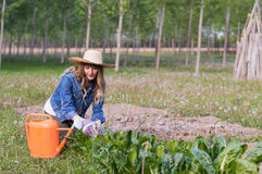 Beautiful girl in the garden Royalty Free Stock Photography