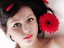Beautiful girl with gerber Royalty Free Stock Photos