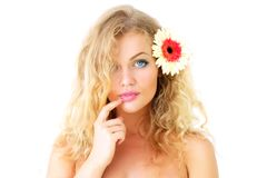 Beautiful girl and gerbera Royalty Free Stock Images