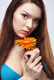 Beautiful girl with gerbera Royalty Free Stock Image